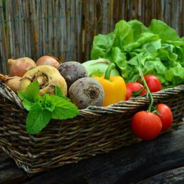 体を温める食品、冷やす食品